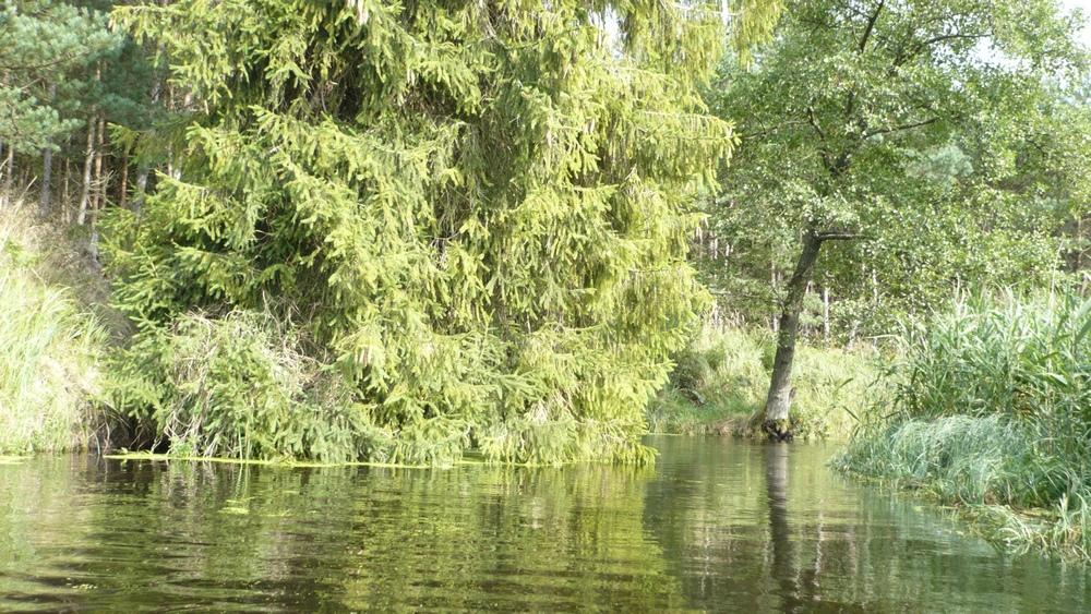 Kościół Zielonoświątkowy w Miastku Spływ kajakowy